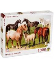 Puzzle New York Puzzle de 1000 piese - Rase de cai