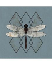 Ohhms - Close (CD)