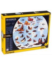 Puzzle New York Puzzle de 1000 piese - Pinipede