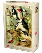 Puzzle Deico Games de 1000 piese - Encyclopedia, Birds