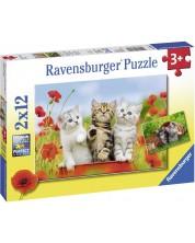 Puzzle Ravensburger din 2 x 12 piese -  Aventurile pisoilor