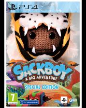 Sackboy: A Big Adventure Special Edition (PS4)