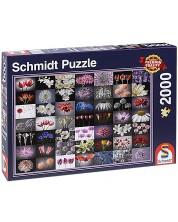 Puzzle Schmidt de 2000 piese - Salut colorat