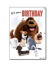 Felicitare muzicala Danilo - Secret Life of Pets: Birthday -1