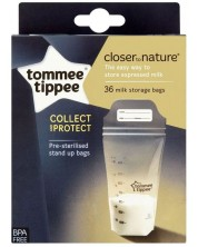 Set pungi pentru stocare lapte matern, Tommee Tippee - Closer to Nature, 350 ml, 36 buc. -1