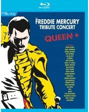 Various Artists- Freddie Mercury Tribute Concert (Blu-Ray)