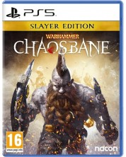 Warhammer: Chaosbane Slayer Edition (PS5)	 -1