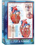 Puzzle Eurographics de 1000 piese – Corpul uman, Inima - 1t