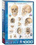 Puzzle Eurographics de 1000 piese – Craniu uman - 1t