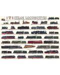 Puzzle Eurographics de 1000 piese – Locomotive cu abur - 2t