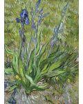 Puzzle Eurographics de 1000 piese – Stanjenel, Vincent van Gogh - 2t