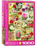 Puzzle Eurographics de 1000 piese – Catalog cu soiuri de trandafiri - 1t