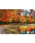 Puzzle Eurographics de 1000 piese – Padurea Sharon in Ohio - 2t