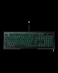 Tastatura gaming Razer Ornata - 7t