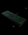 Tastatura gaming Razer Ornata - 6t